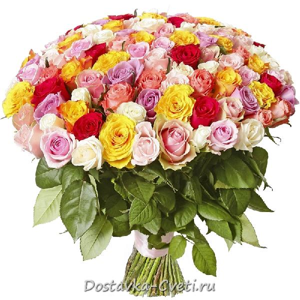 Заказать букет цветов 100 роз цветы с доставкой в усть-каменогорске