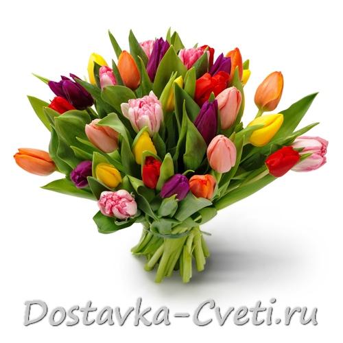 Купить оптом цветы в Москве и регионах России