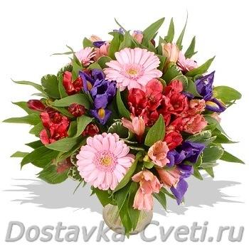 Цветы купить дешевые в москве