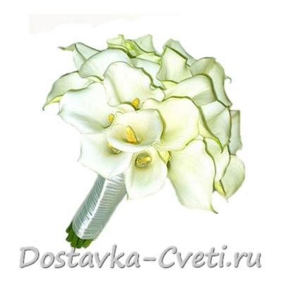 Дешевые цветы в москве в горшке