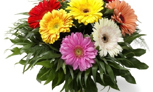 Заказ цветов из обнинска