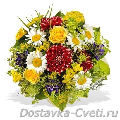 Красивые и дешевые цветы