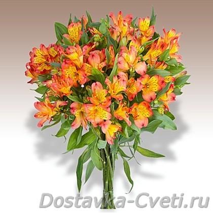Где недорого купить цветы в москве