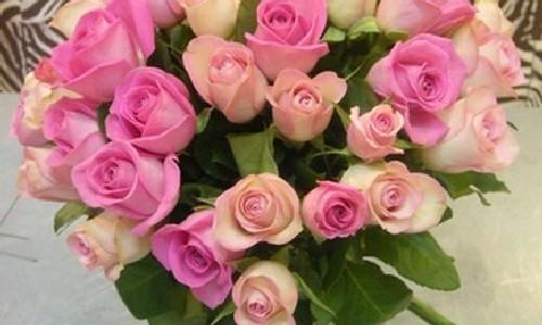 Купить подмосковные розы черные розы купить минск