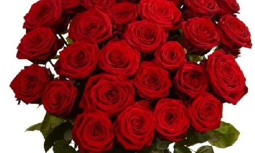 Заказ цветов розы уральские искусственные цветы для повязок на голову купить оптом