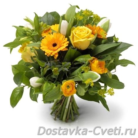 новинка цветы многолетние фото и названия