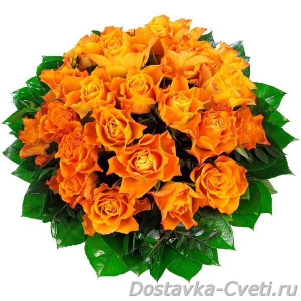 Красивые недорогие цветы