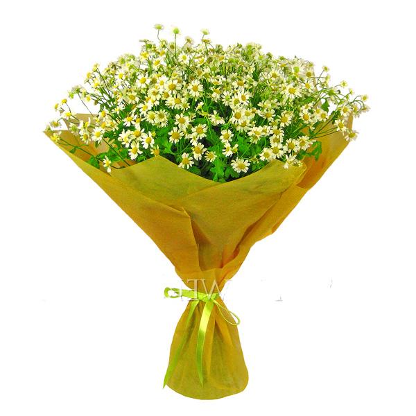 Цветов доставка заказ цветов дешево