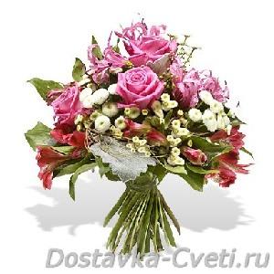 зимостойкие розы купить
